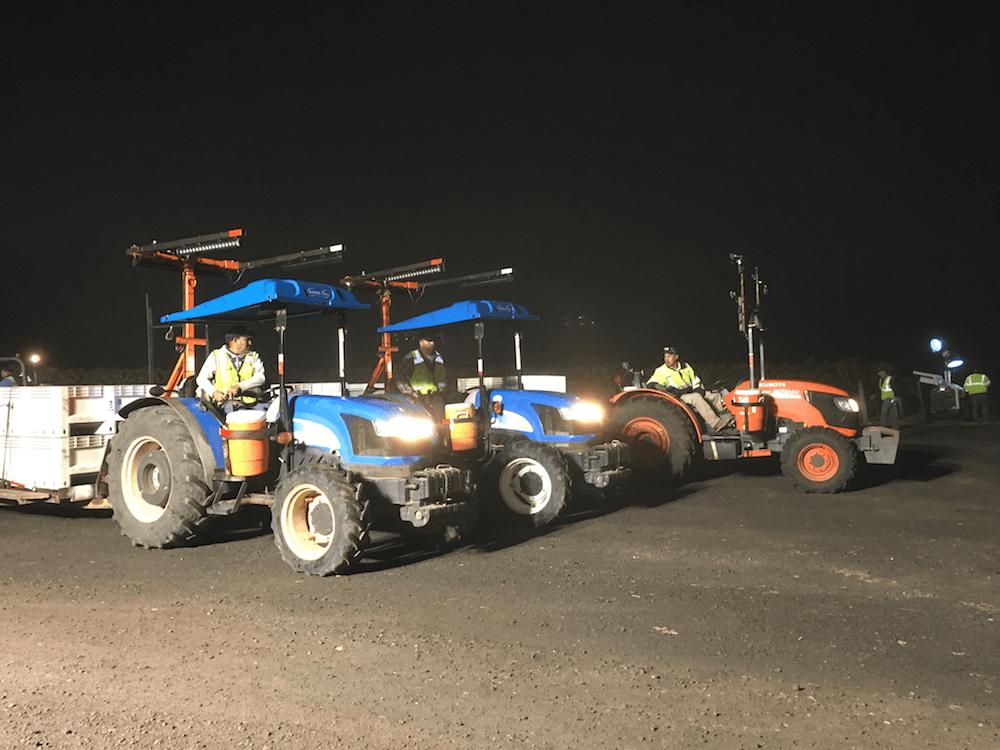 Night harvest SC